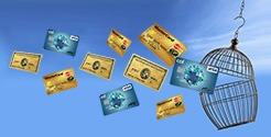 Z-Credit Free