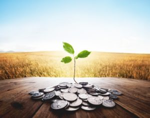אשראי הוא חיוני לצמיחת עסקים